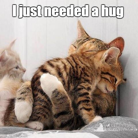 I Just Needed a Hug