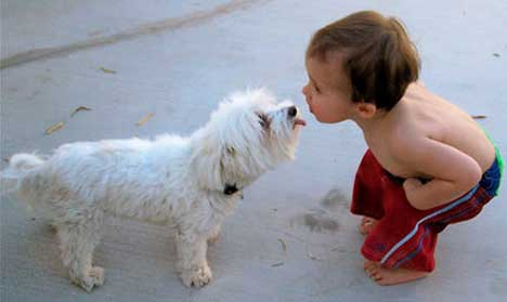 best_kisses_puppy_kiss_sfw