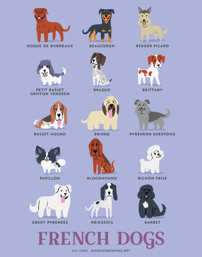 dogs-of-the-world (5)