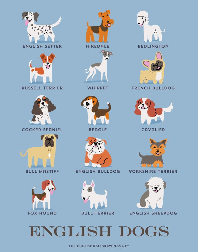 dogs-of-the-world (7)