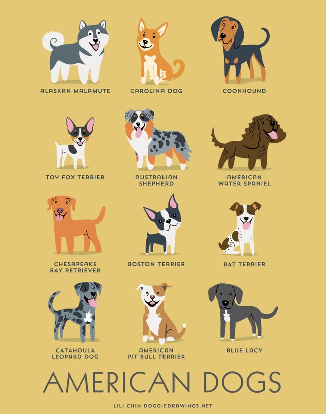 dogs-of-the-world (8)