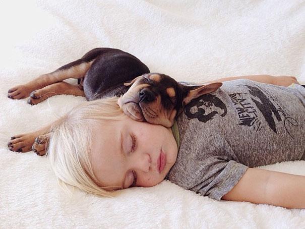 kids-sleep-with-dogs (1)