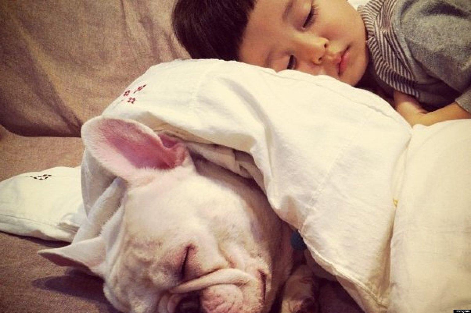 kids-sleep-with-dogs (10)