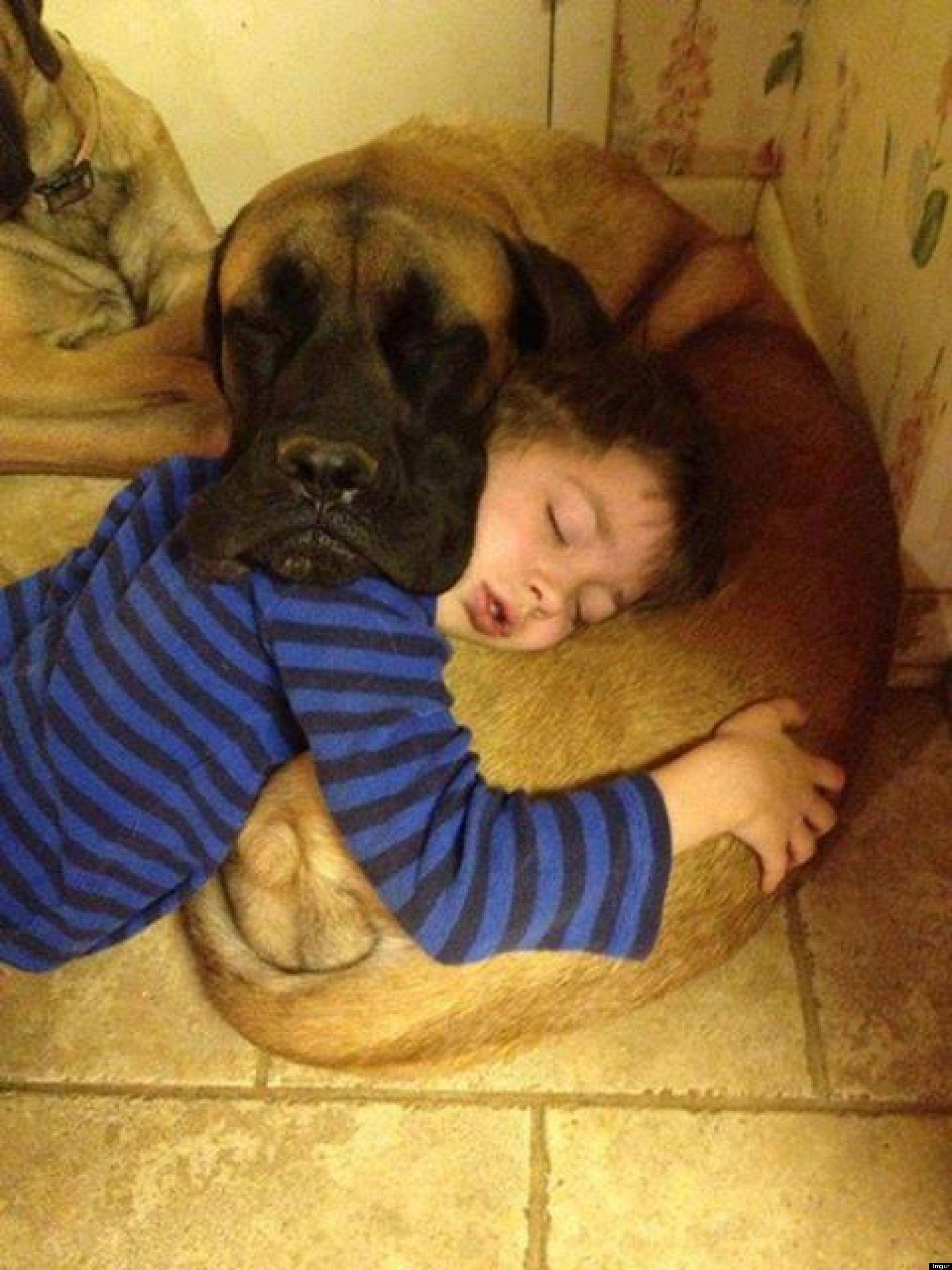 kids-sleep-with-dogs (11)