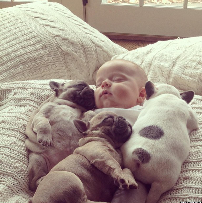 kids-sleep-with-dogs (14)