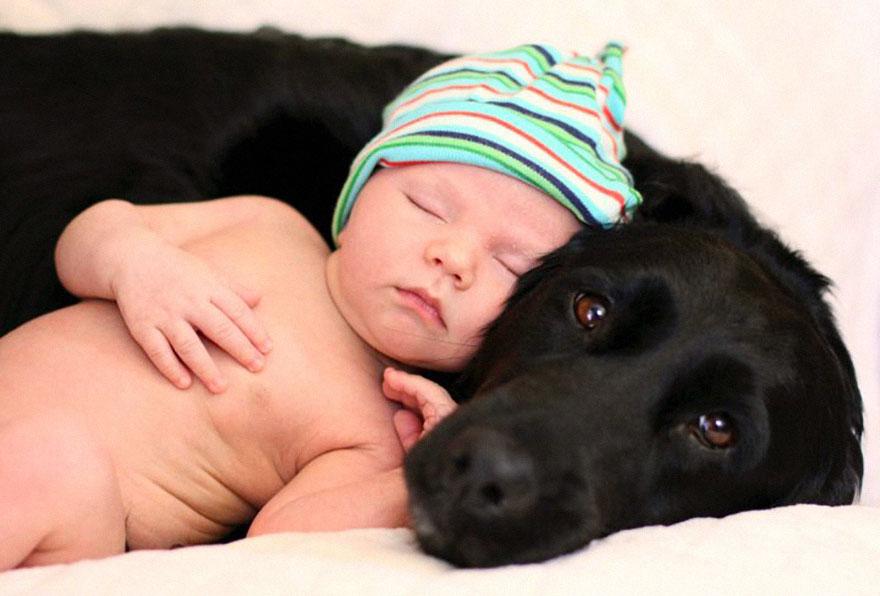 kids-sleep-with-dogs (16)