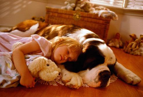 kids-sleep-with-dogs (19)