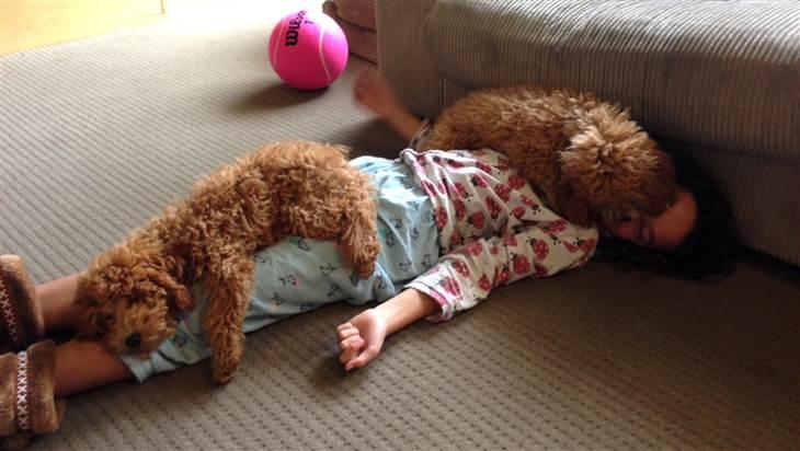 kids-sleep-with-dogs (2)