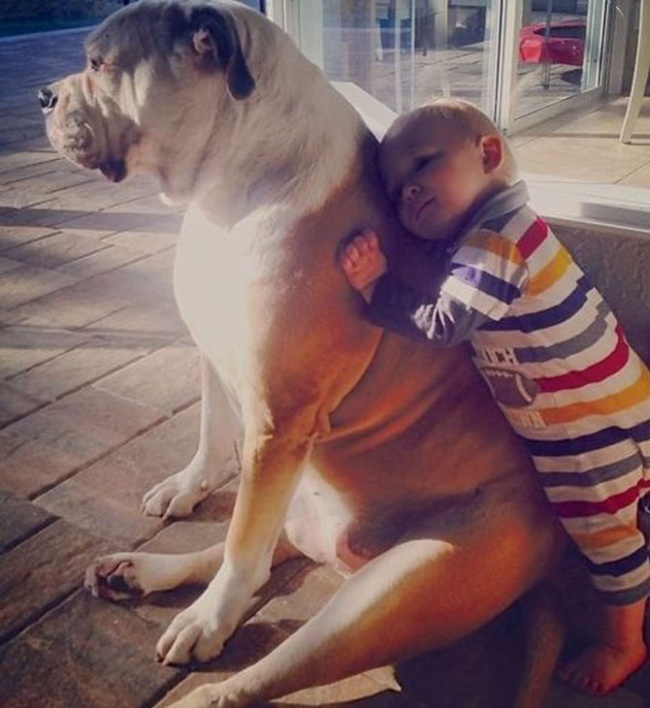 Kid leaning on dog