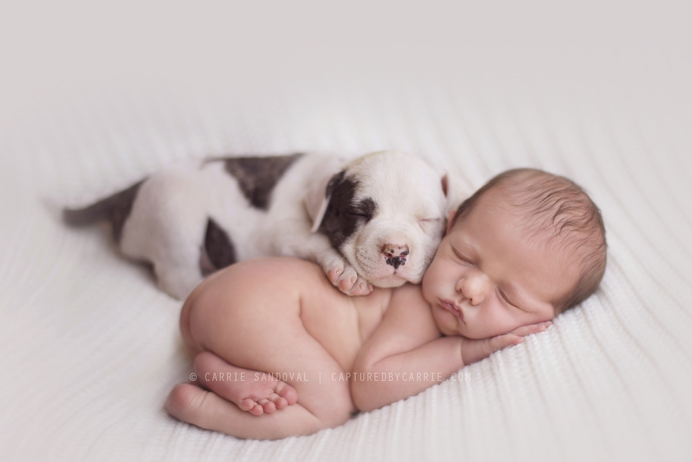 Babies and Animals, a Vision of Cuteness | Cuteness Overflow