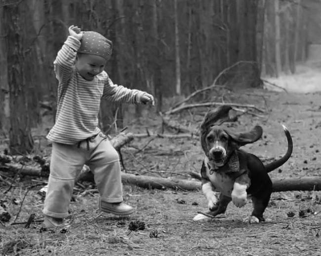 Dog and boy playing outside