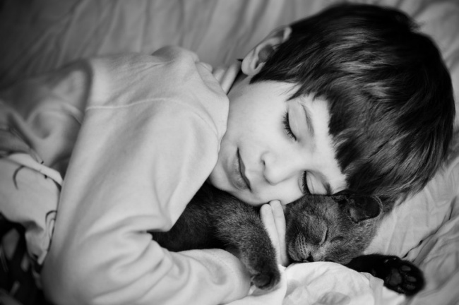 boy and cat napping