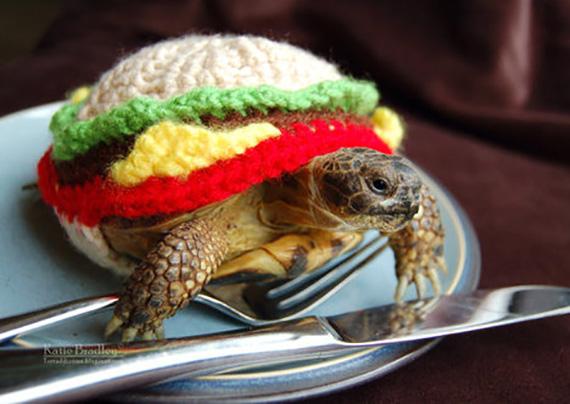 Tortoise Sweater