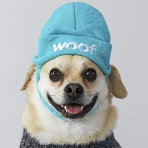 Dog Woof Hat