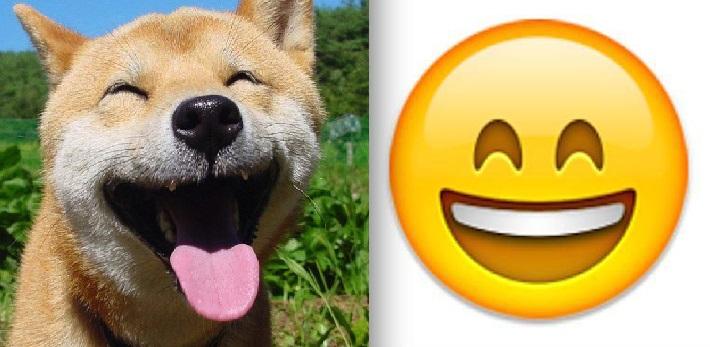 happy dog emoji