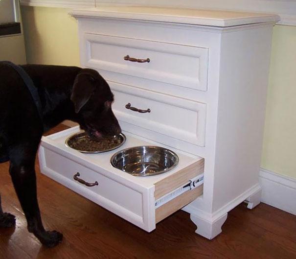 dog-bow-drawer