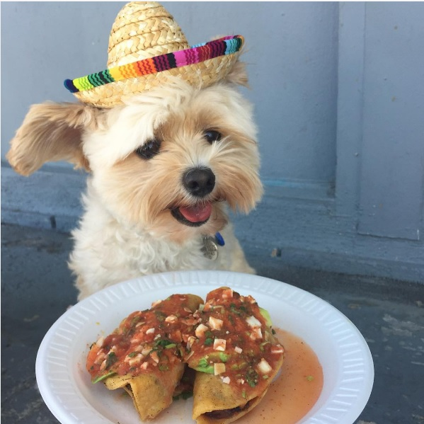 popeye-foodie-enjoying-tacos