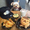 popeye-foodie-looks-like-a-sanrio-character