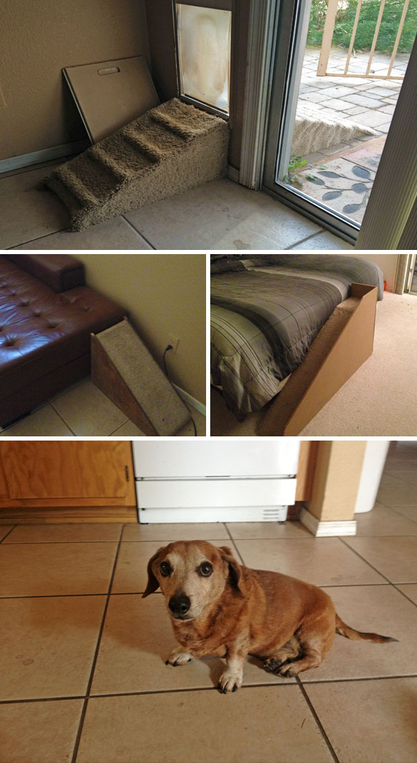 stairs-for-short-legged-dogs