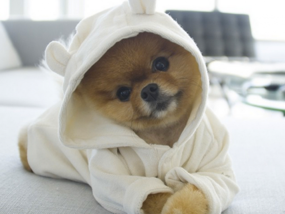 jiff-in-a-cute-onesie