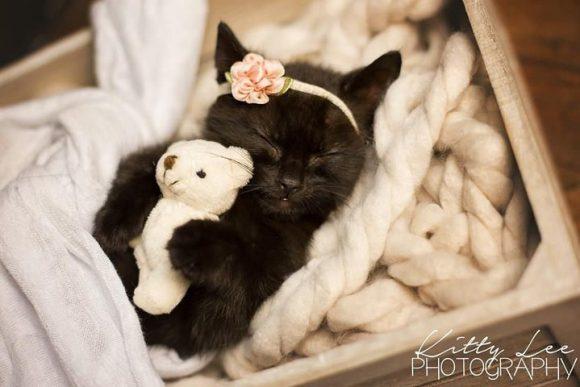 Luna Newborn shoot