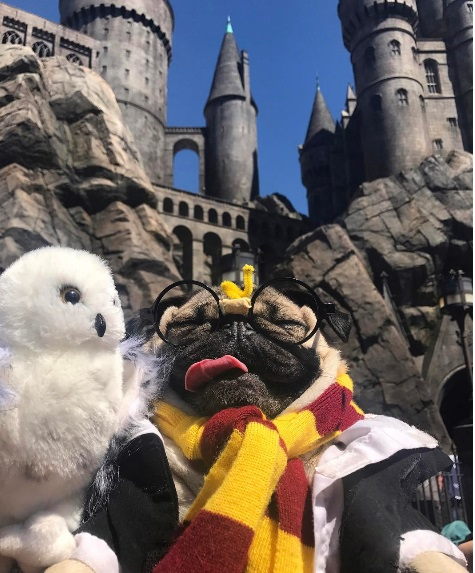 Doug at Hogwarts