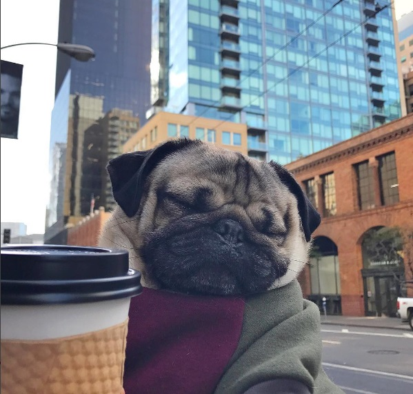 Doug drinking coffee