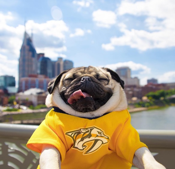 Doug proud to be from nashville
