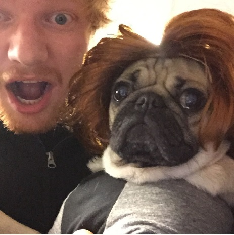 Doug with Ed Sheeran