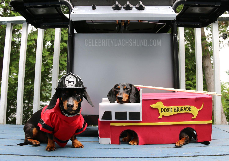 Crusoe Fireman