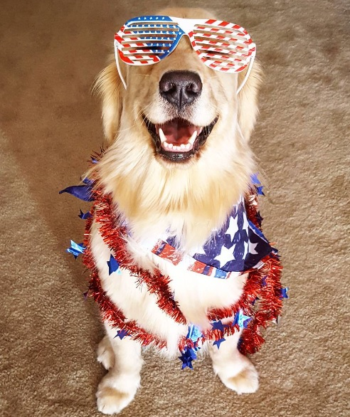 Harlow celebrates 4th of July
