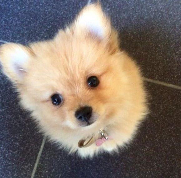 super cute eyes