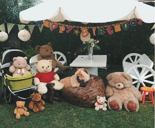 Chewy bear family