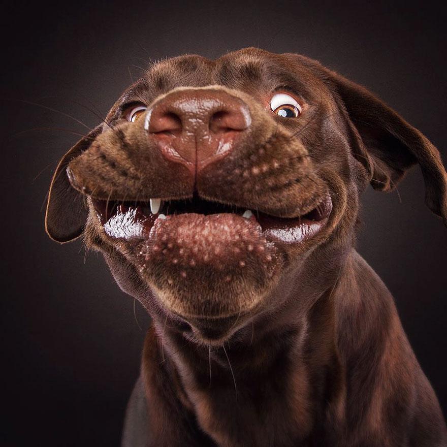 gotcha happy face