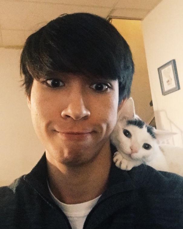boyfriend and cat are soulmates