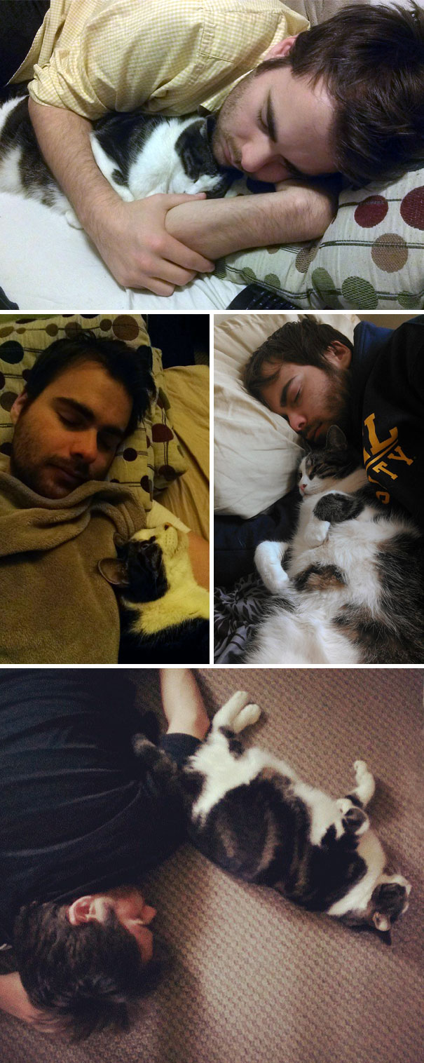 cat finds husband and sleeps with him