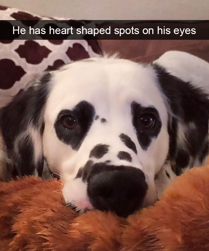 heart shaped eyes