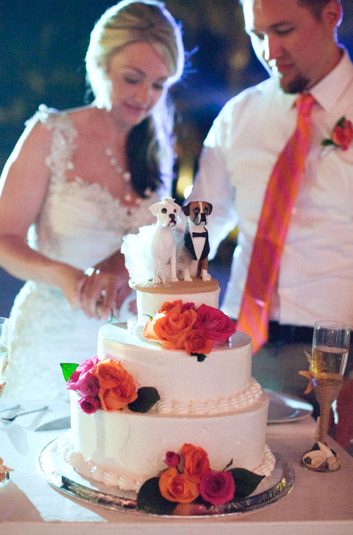 Couple Slicing Cake with dog toppers