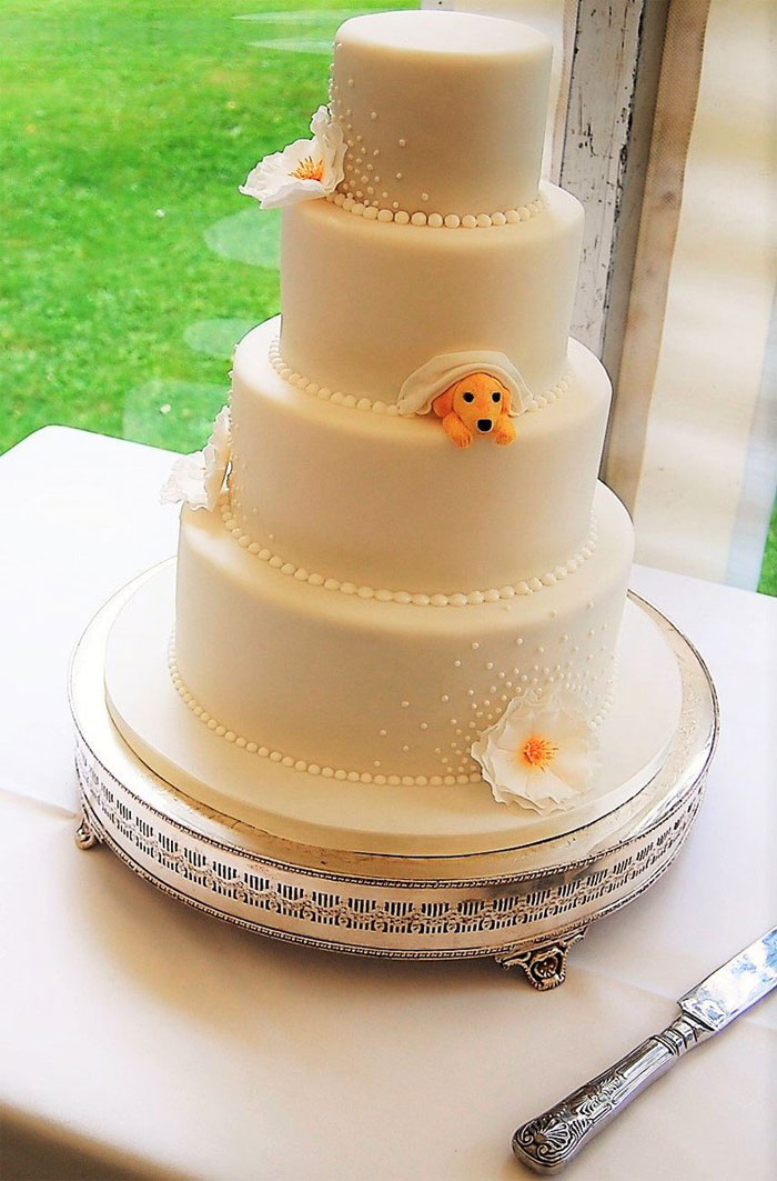 Couple and Pomeranian dog topper