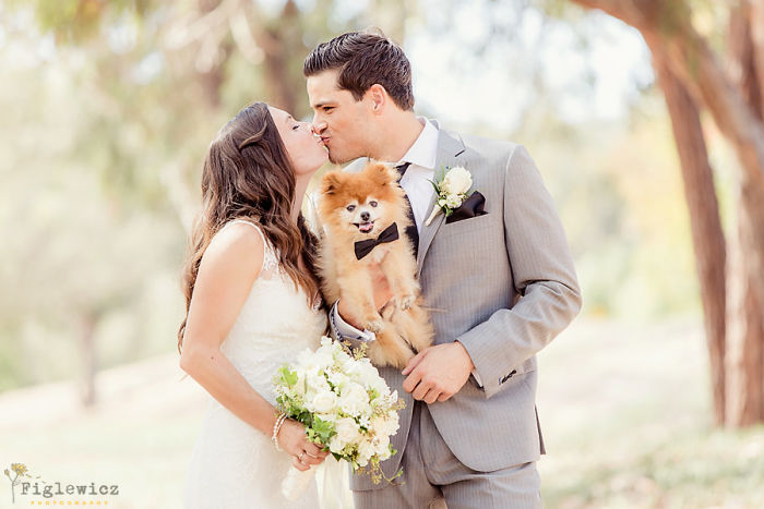 Couple and Pomeranian dog