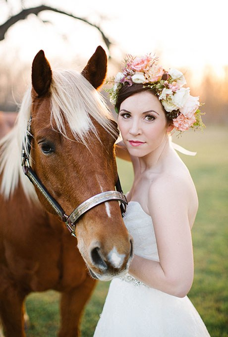other pet horse of honor