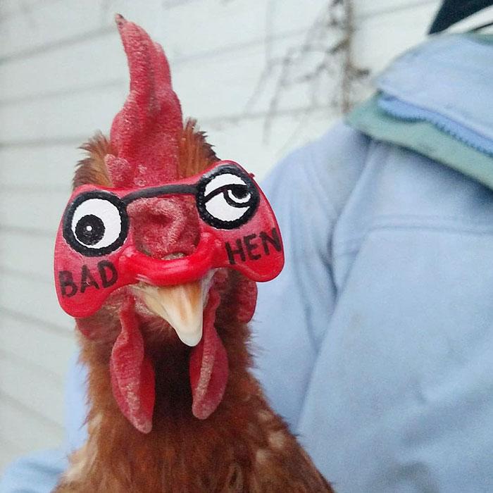 cute mask bad hen