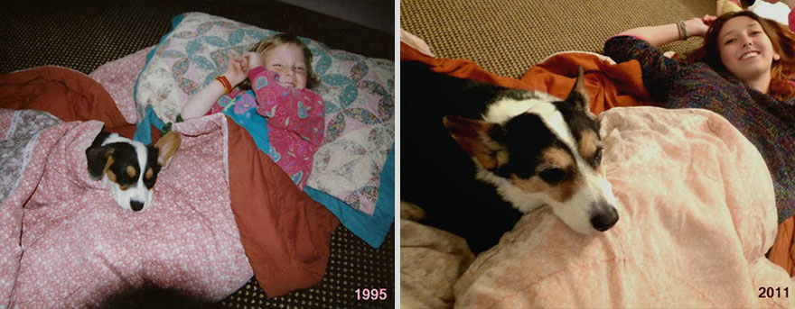 10 years apart dog and owner