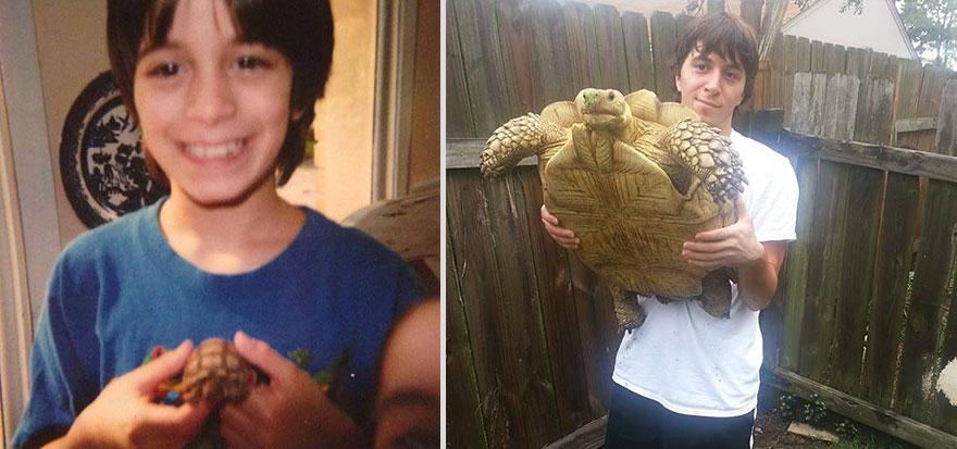 17 years apart turtle