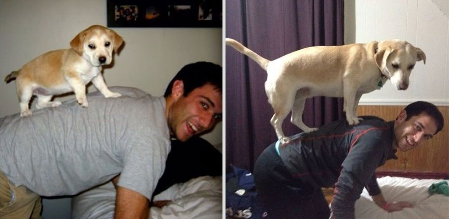 cute then and now pic dog and owner