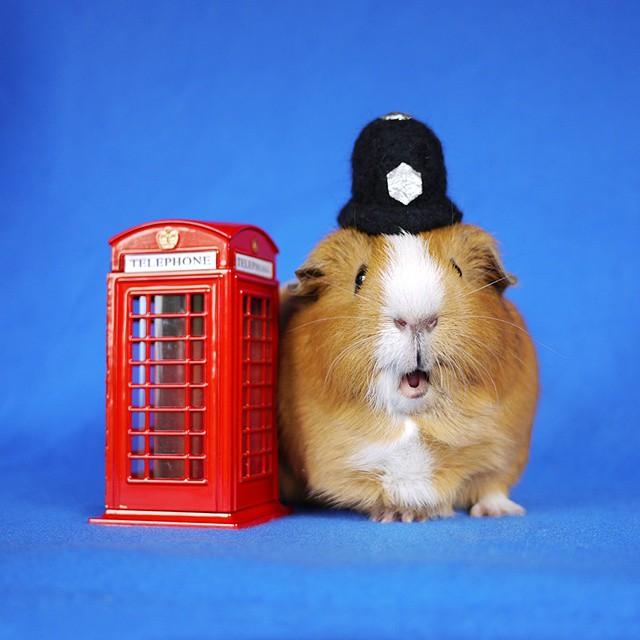 Fuzzberta London Police