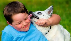dog licking kid
